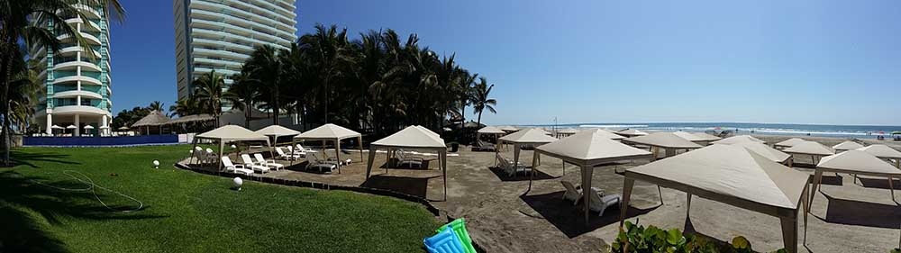 Costa Bamboo